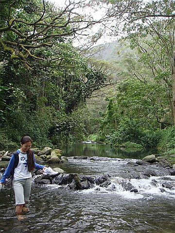 Hiilawe River 03-24-09