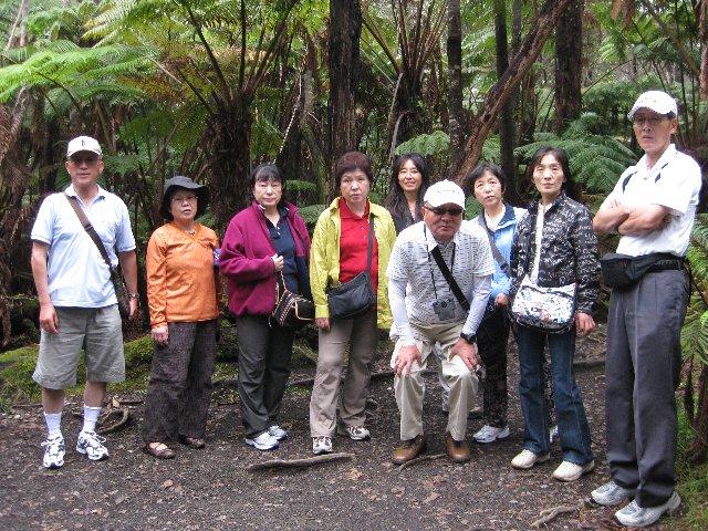 Ishihara Group 1