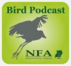 NFA-birdpodcast-En-logo