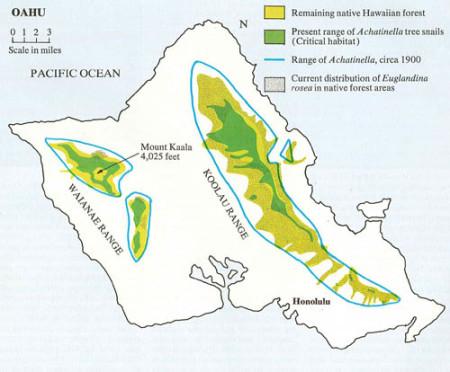 Achatinella-Range-Oahu-Map-Sml