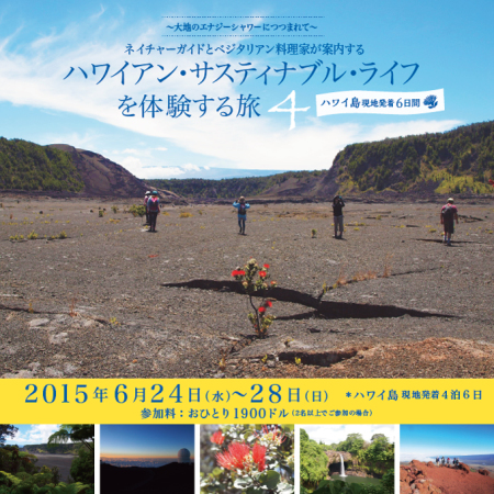 hawaii_tour2015_kizitop02